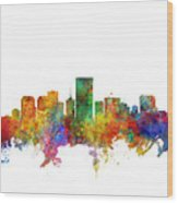 Richmond Virginia Skyline Wood Print