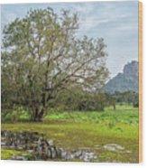 Sigiriya - Sri Lanka Wood Print