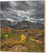 12000 Foot Flower Wood Print