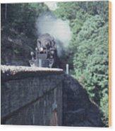 1218 At Mill Creek Wood Print