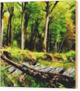 Landscape On Nature Wood Print