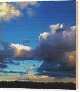 12252012017 Wood Print