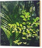 Jungle 123 Wood Print