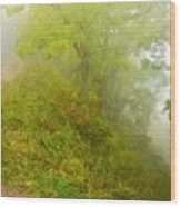 Landscape Paintings Nature Wood Print