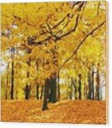 Nature New Landscape Wood Print