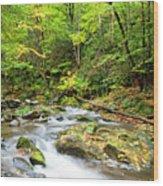 1266 Great Smoky Mountain National Park Wood Print