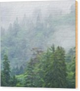 Nature Scenery Oil Paintings On Canvas Wood Print