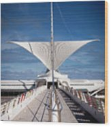 1273 Milwaukee Museum Of Art Wood Print