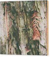 1277 Wood Print