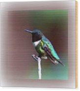 1281 - Hummingbird Wood Print