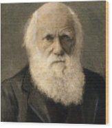 Charles Robert Darwin, 1809-1882 Wood Print