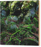 Fontainebleau Forest Wood Print