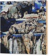 Great Falls Of The Potomac Wood Print