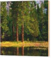 Landscape Poster Wood Print
