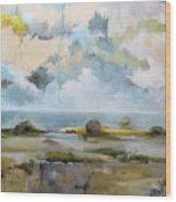 Misty Landscape Wood Print