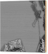 Rock Climber Collection Wood Print