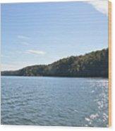 Savannah River  Wood Print