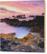 Scenery Oil Paintings On Canvas Wood Print