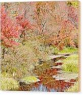 Stream In Autumn, Pocono Mountains, Pennsylvania Wood Print
