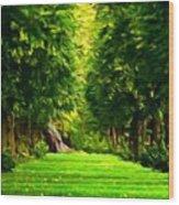 Nature Oil Canvas Landscape Wood Print