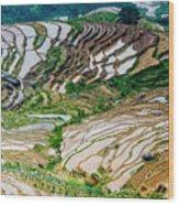 Longji Terraced Fields Scenery Wood Print
