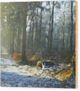 Oil Paintings Art Landscape Nature Wood Print