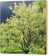 Oil Painting Landscape Pictures Wood Print