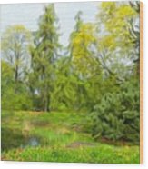 Landscape Nature Pictures Wood Print