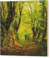 Landscape Nature Scene Wood Print