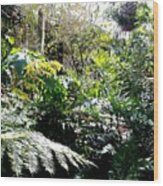 Brooklyn Garden Wood Print