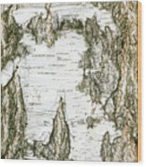 Detail Of Brich Bark Texture Wood Print