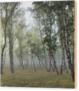 New Landscape Wood Print