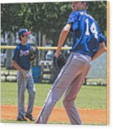 14 On The Mound Wood Print