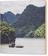 Picturesque Sea Landscape. Ha Long Bay, Vietnam Wood Print