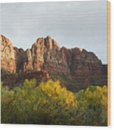 Zion National Park In Autumn Wood Print