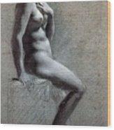 14095 Pierre-paul Prudhon Wood Print