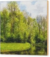 Nature Landscape Lighting Wood Print