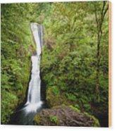 1418 Bridal Veil Falls Wood Print