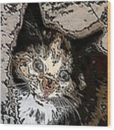 Abstract Cat Wood Print