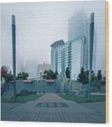 Charlotte North Carolina City Skyline And Downtown Wood Print