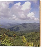 The El Yunque National Forest, Puerto Rico Wood Print