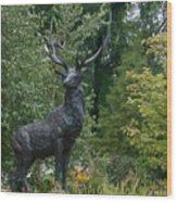 Wellfield Gardens Wood Print