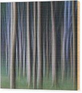 150403p262 Wood Print