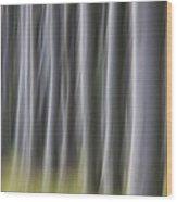 150403p263 Wood Print