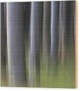 150403p264 Wood Print