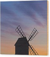 150501p046 Wood Print