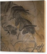 150501p086 Wood Print
