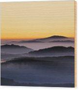 151207p105 Wood Print