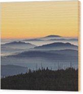 151207p109 Wood Print