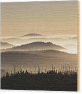 151207p110 Wood Print